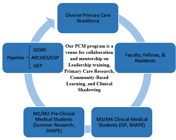 Primary Care Mentorship Proggram