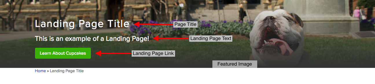 Default landing page header with red arrows pointing to labeled landing page areas